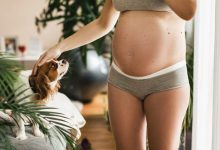 Photo of Emotional Stage of Pregnancy;when Does Baby Bump First Start to Show