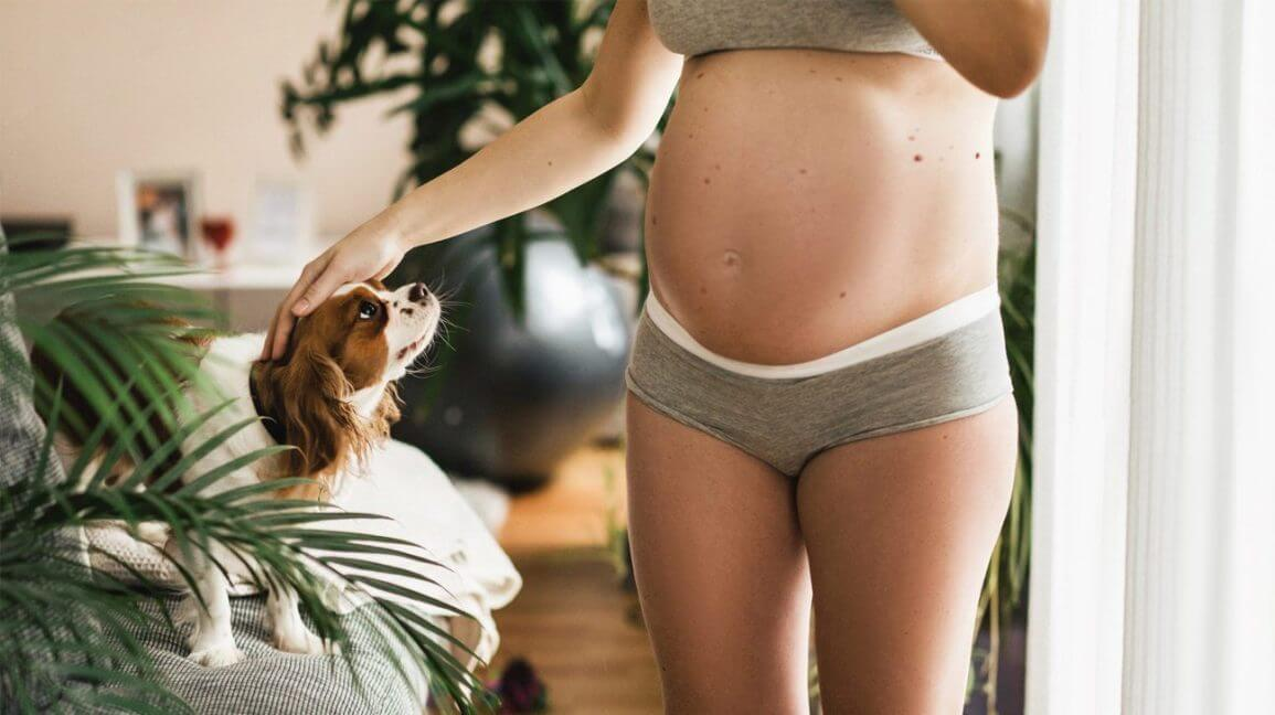 Emotional Stage of Pregnancy;when Does Baby Bump First Start to Show